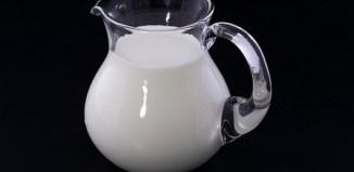 la leche, alimento sano o perjudicial