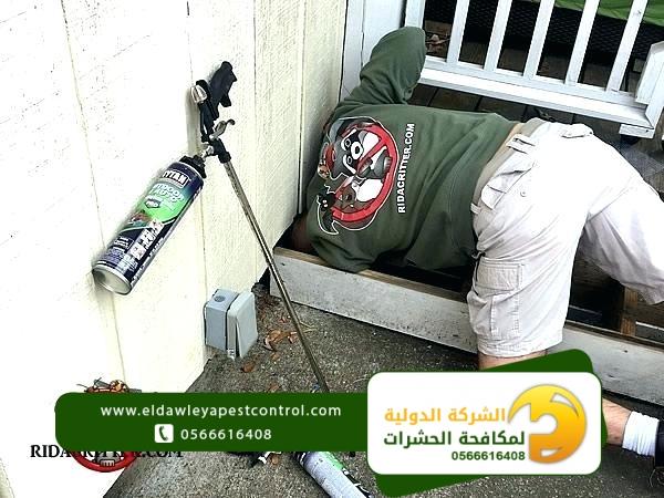 شركة رش مبيدات داخل جدة
