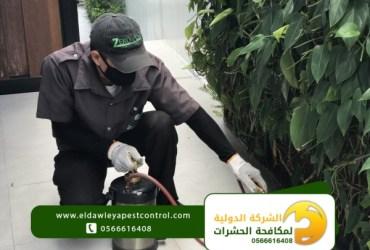 شركة رش مبيدات داخل جدة بأسعار مناسبة