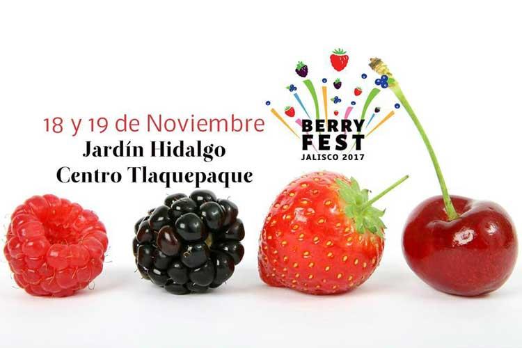 Berry Fest Jalisco 2017