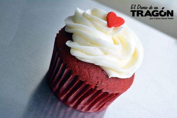 diario-tragon-cupcake-land-ft-7