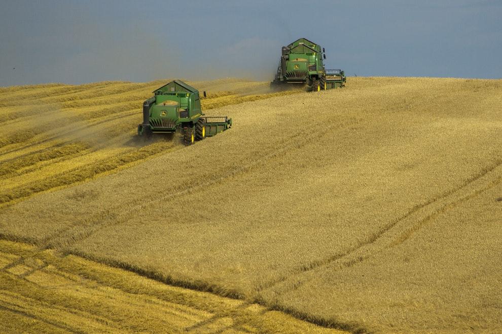 agricultores guerra comercial