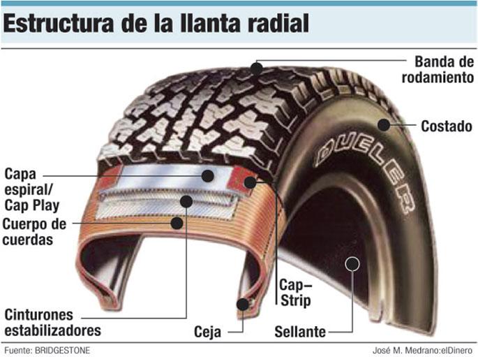 neumaticos estructura radial
