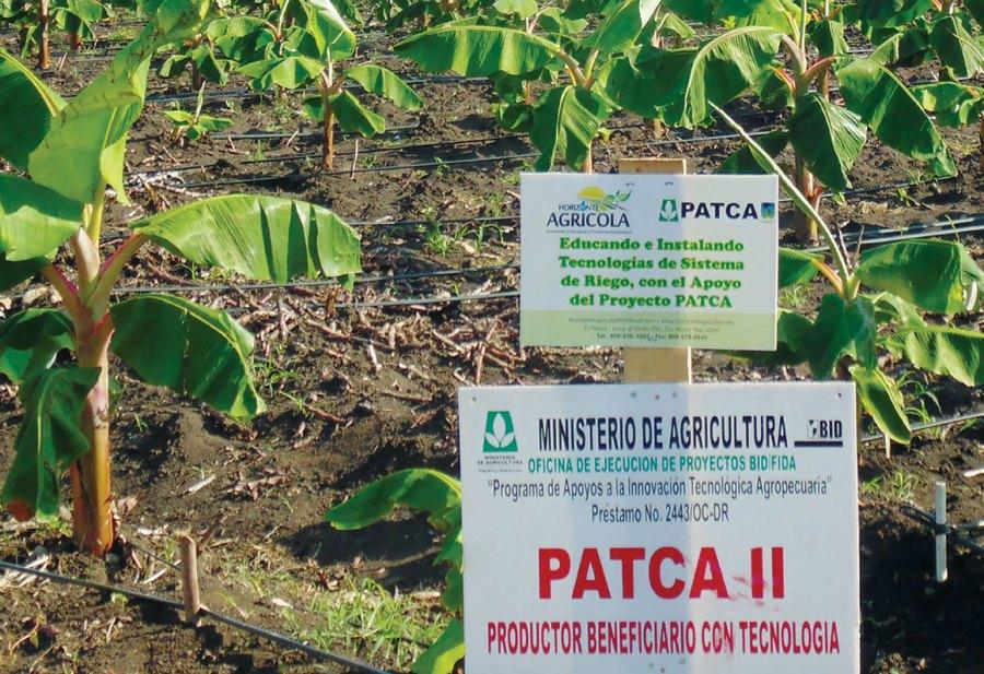 patca ii agricultura