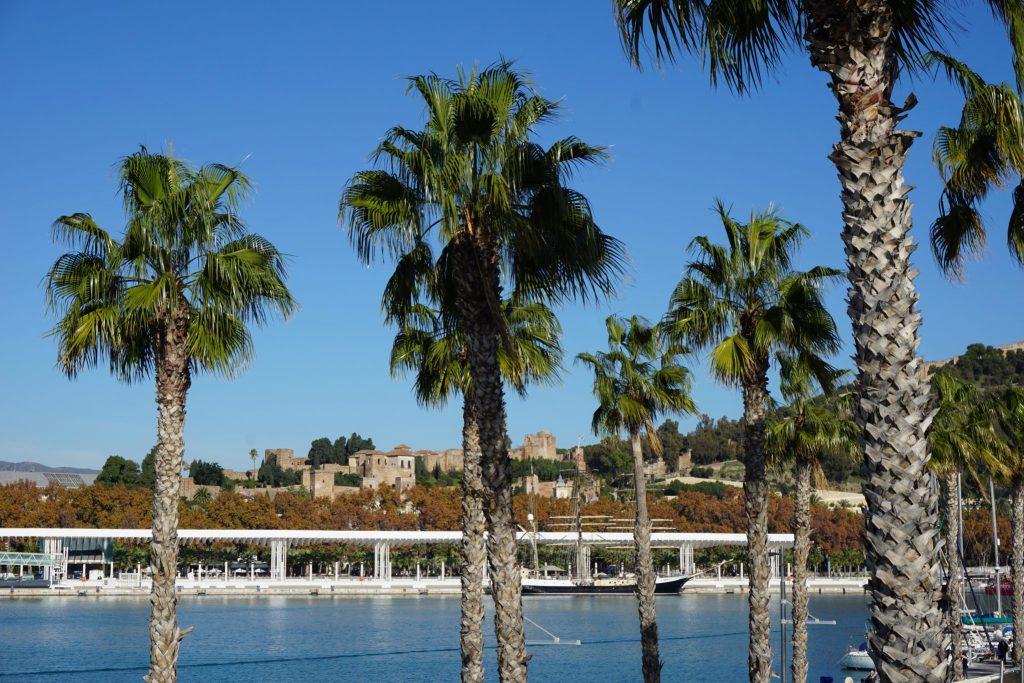 Paseo del puerto de Málaga