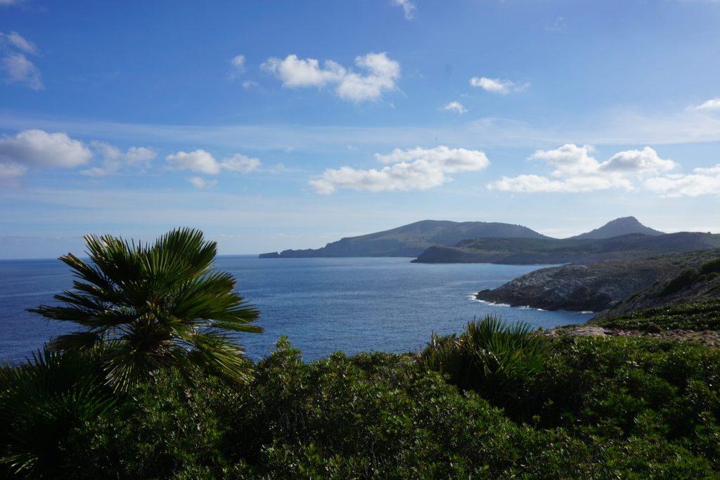 Palmito y el Cabo des Freu al fondo
