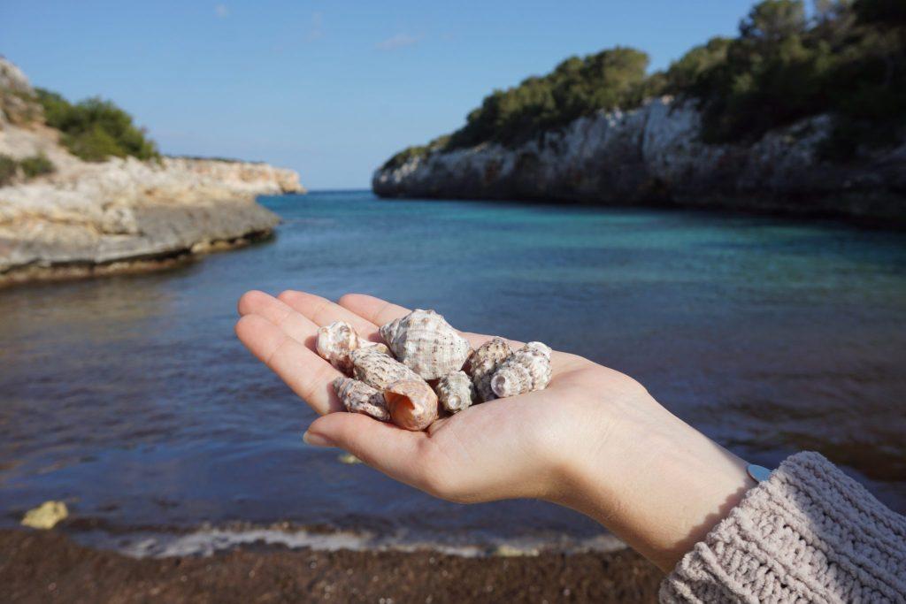 Cala Pilota, Mallorca