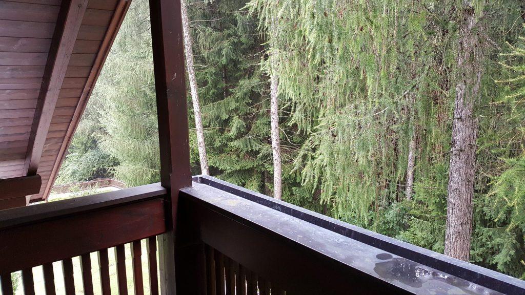 balcón bosque alojamiento dolomitas
