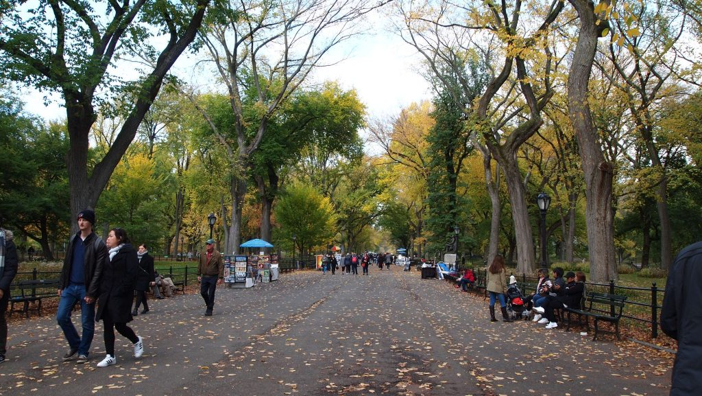 paseo central park