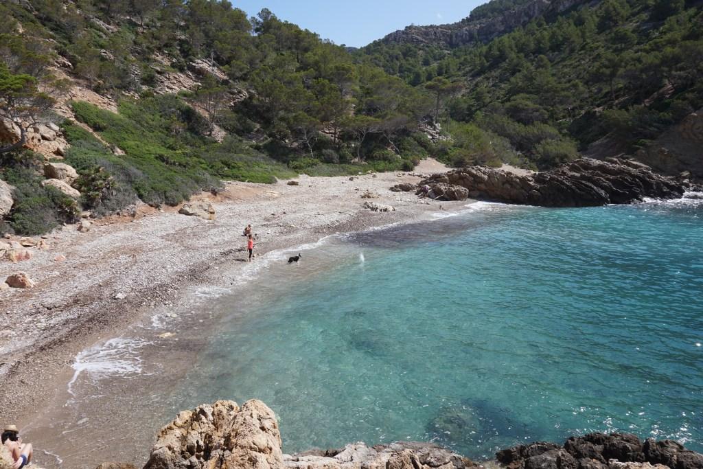 Cómo llegar a Cala d'Egos, Puerto de Andratx (Mallorca)