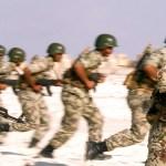 فوكس نيوز: الجيش المصري أعاد الحياة لسيناء