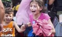 ما سبب أثارت حالةمن السخط الواسع لكتابة فيلم عن المأساة السورية ؟