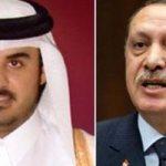 ماذا حدث بين أردوغان وأمير قطر بعد انهيار الليرة التركية؟