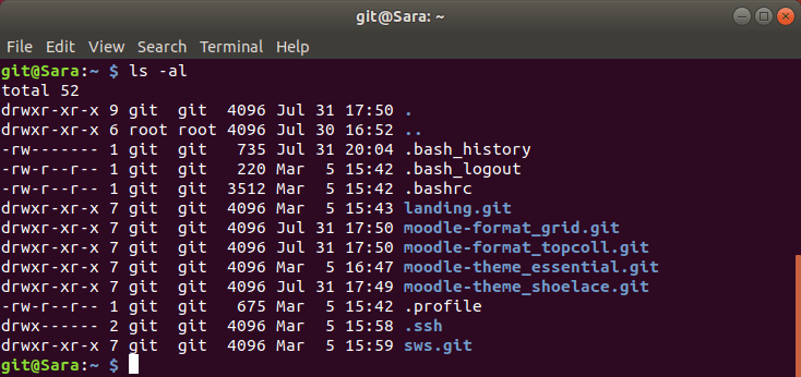 Git repositories on the Pi