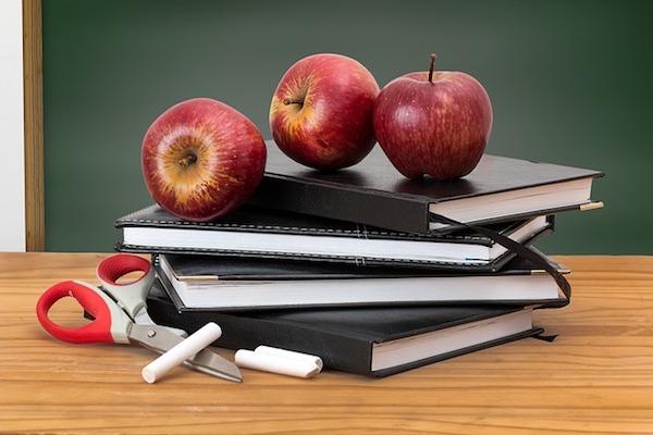 MoodleBites for Teachers