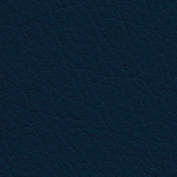 Eleather Swatch - Blue 2
