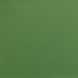 ELeather Swatch - Green