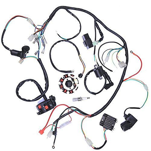 Wphmoto Complete Electrics Wiring Harness Stator Coil Cdi