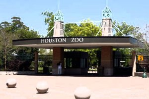 19763854-Houston-Zoo