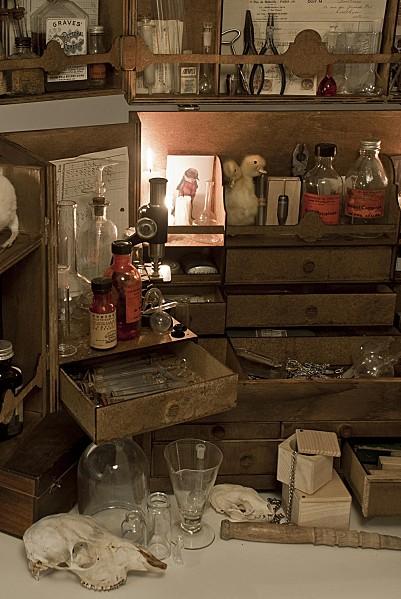 petites-curiosites-cabinet-de-curiosites-xl-03