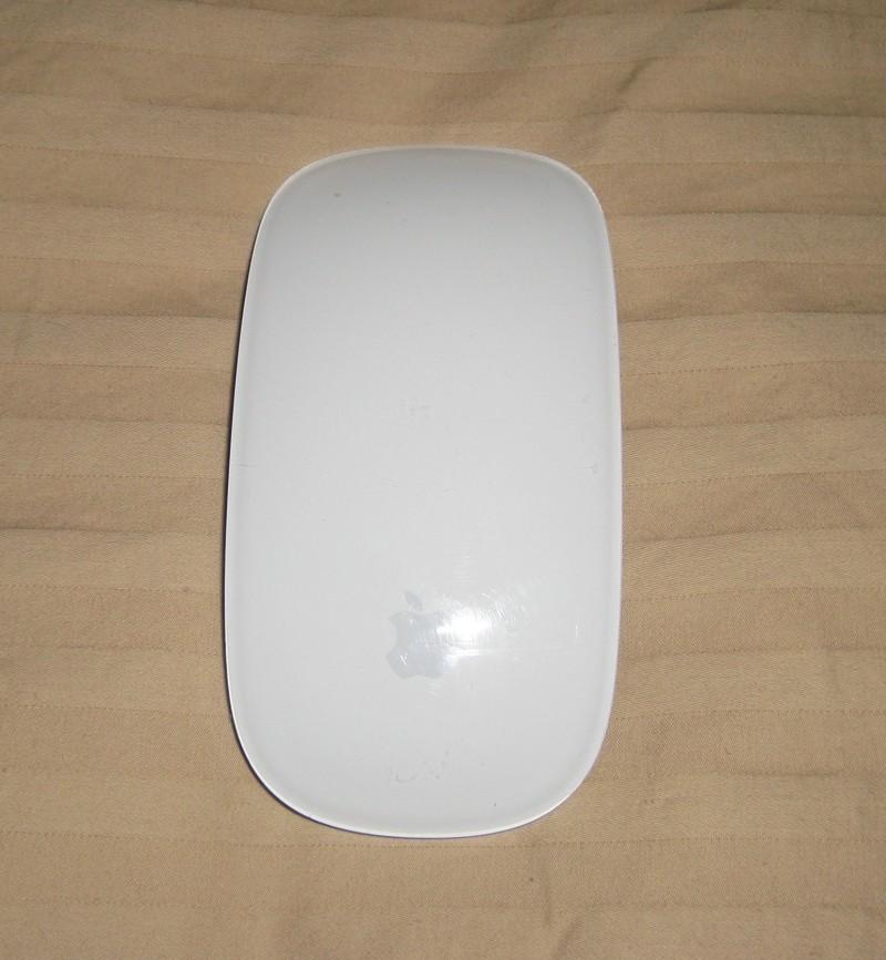 the Apple Magic Mouse