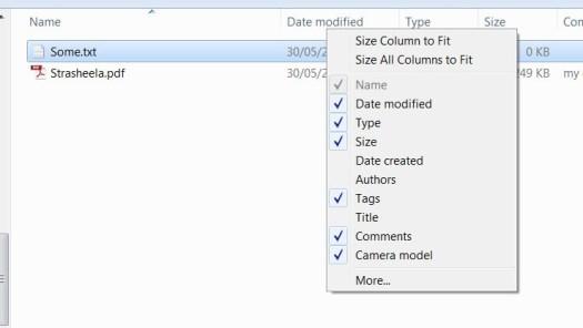 File Metadata integration with Windows Explorer