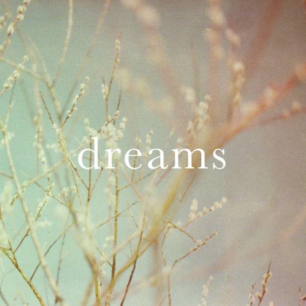 the Picturesque Episodes – Dreams V