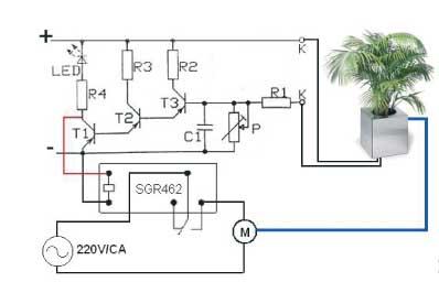 Detector esqu2