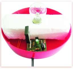 Foto 8. Circuito acoplado en recipiente
