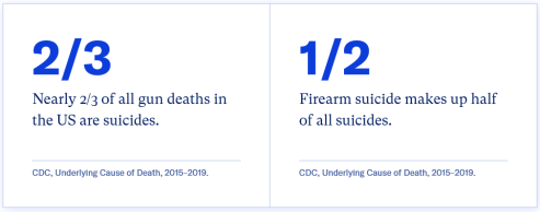 Firearm Suicide in the United States (image)