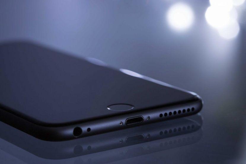 Puerto carga iPhone
