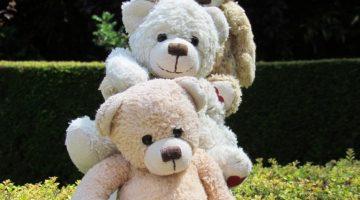 Bears Adventures, Bears blog, children stories