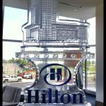 Hilton Ice Sculpture With Color