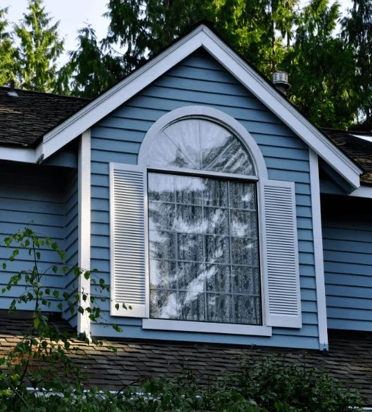 sammamish painter reviews