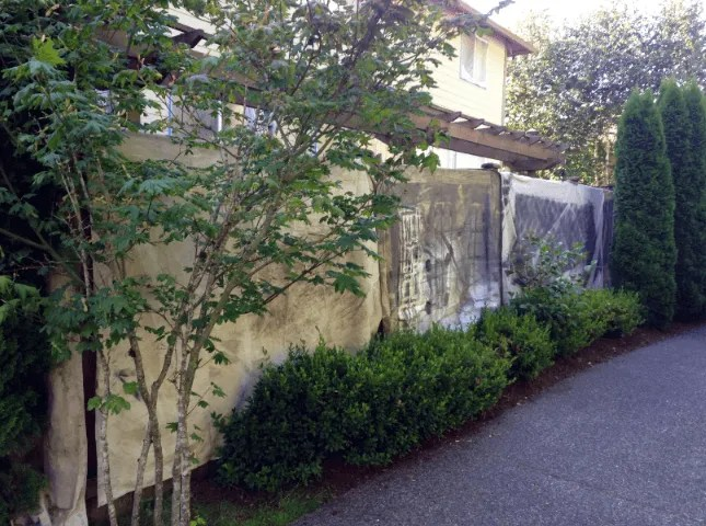 fence stain TWP