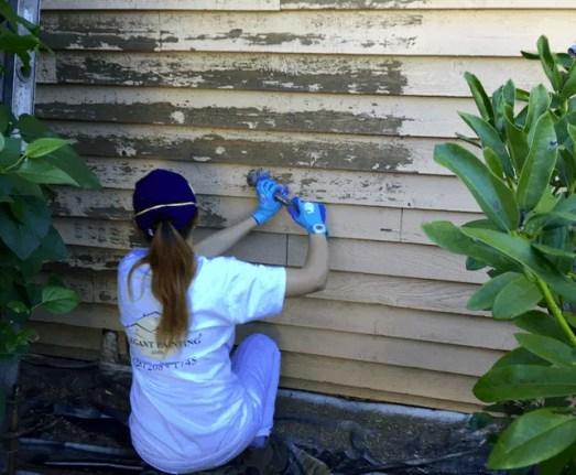 Bellevue painting contractors