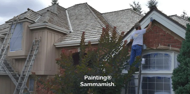 woodinville WA house painters