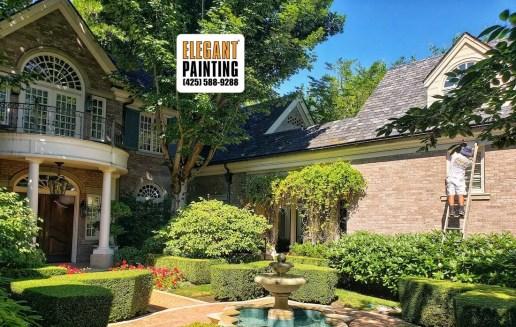 medina house painter