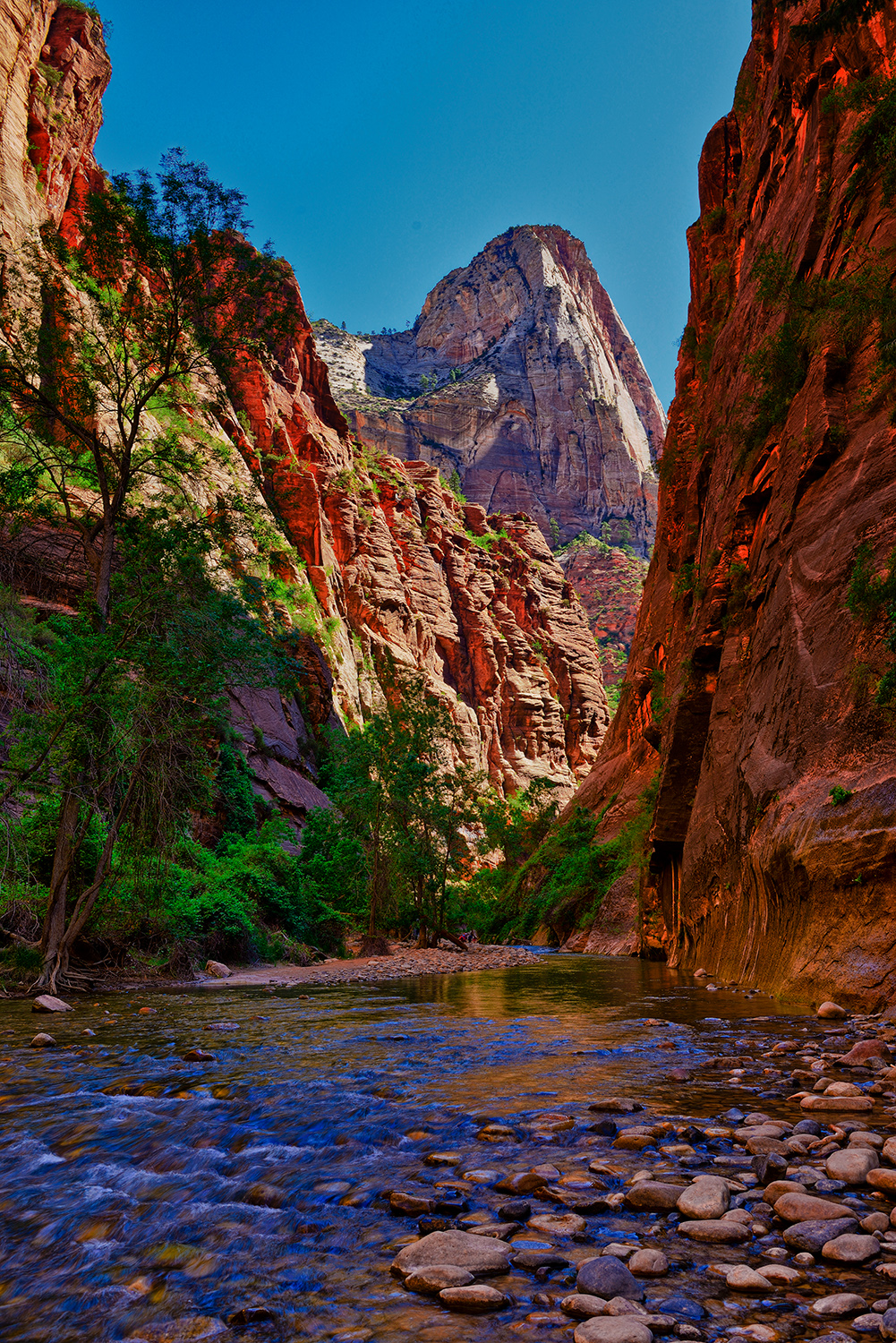 Fine Art Nature Photography From Zion National Park And