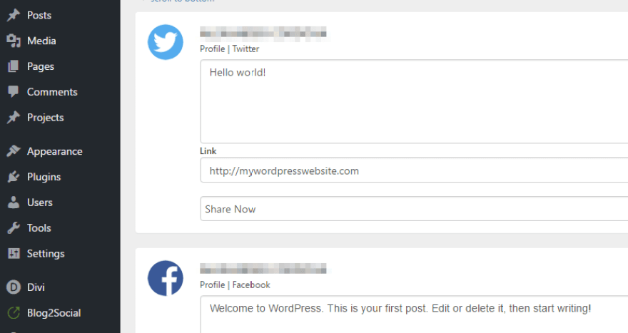 Customizing the appearance of your posts for each social media platform.