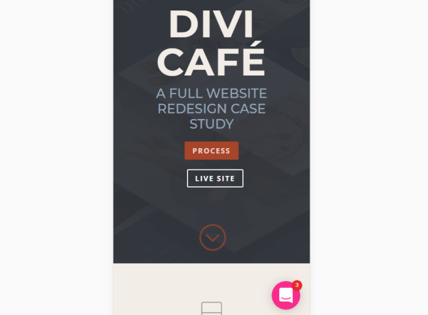 One of Divi's demo pages.