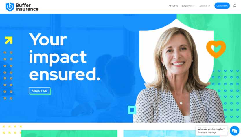 Buffer Insurance