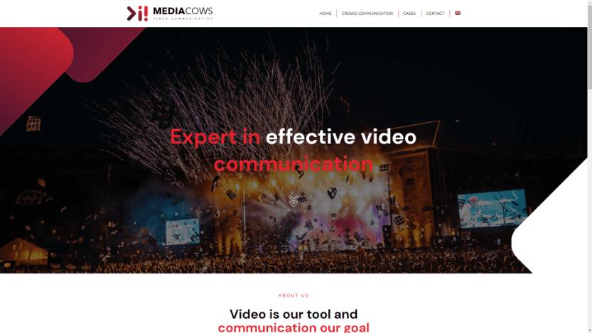 Media Cows