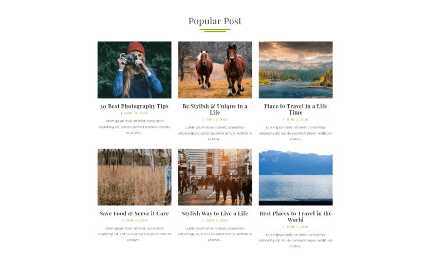Popular Post