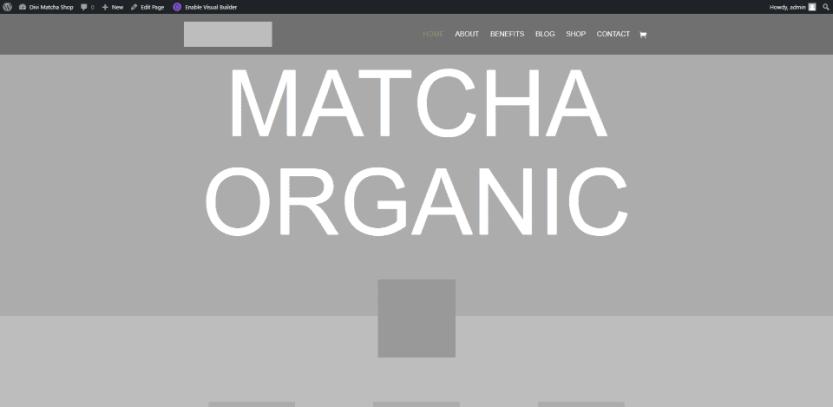 Divi Matcha Shop Child Theme Pages