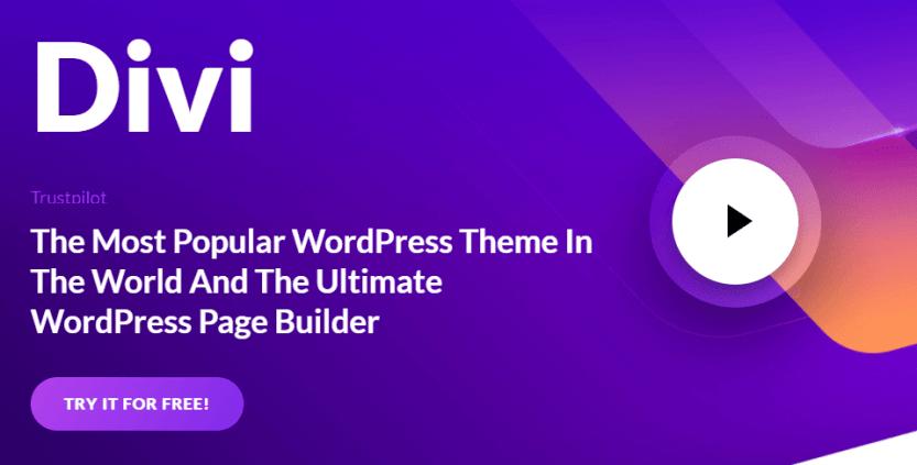 Divi Builder, a WordPress portfolio plugin.
