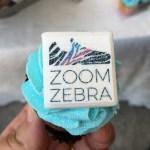 ZoomZebra: correre per fare del bene