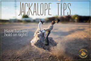 Jackalope tips