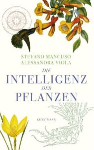 Cover Mancuso Pflanzen