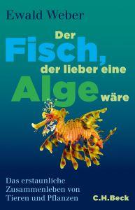 Cover Weber Alge